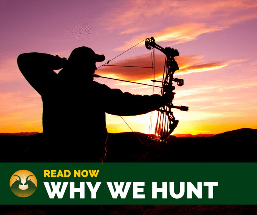 hunting in south africa - silhouette of bow hunter at sunset